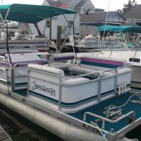 20' Pontoon 50 hp Motor